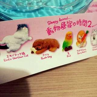 🚚 休眠動物系列2扭蛋-貓咪款
