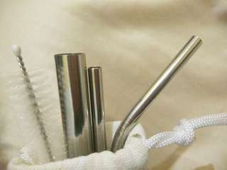 Stainless and Glass Straw