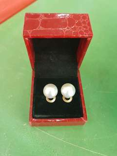 Genuine South Sea Pearl w/ 14k Gold Plated Earring