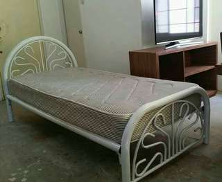 Bed frame (single sized)