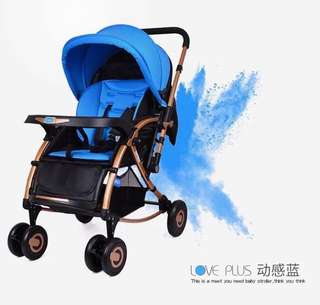 Blue 2 in 1 Stroller with Reversible Handle