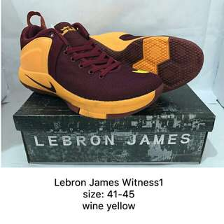 Lebron James Witness 1