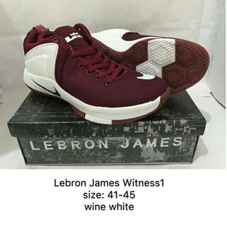 Lebron James Witness 1