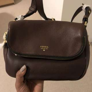 New fossil satchel