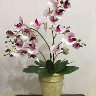 Orked Artificial Flower with Vase