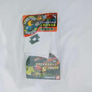 🚚 Lotton 襪子