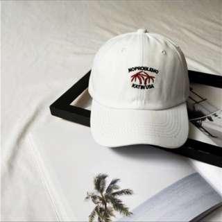 🚚 椰子樹帽子