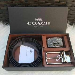 Coach Men Belt