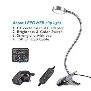 679. LEPOWER LED Reading Light / Light Color Changeable / Night Light Clip on for Desk,Bed Light, Bed headboard and Computers(Silver) [Energy Class A+]