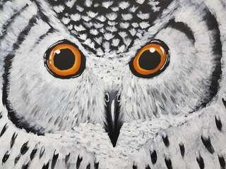 Owl on canvas
