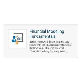 Breaking Into Wall Street (BIWS) - Financial Modelling Fundamentals course