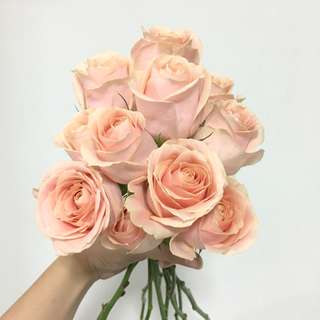 Wedding Bouquet / Peach Rose Single Stalk Flash Sale