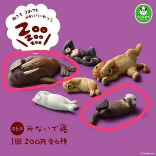 🚚 休眠動物/睡眠動物/第七彈/扭蛋