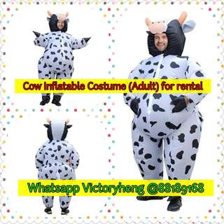 Cow Inflatable Costume for rental