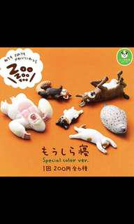 Zoo zoo zoo 休眠動物 special color ver 哥基 馬