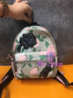 Coach bag 限量 backpack