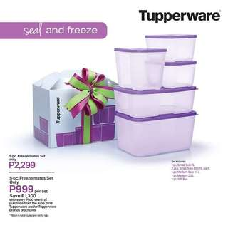 5 pc Freezermate set