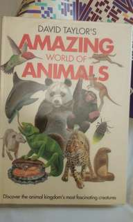 Amazing World of Animals