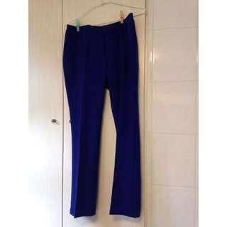 Net 專櫃 西裝褲 休閒褲