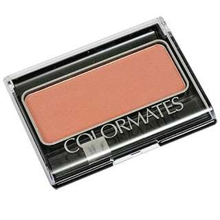 ColorMates Brush and Blush in Sunkissed Tan