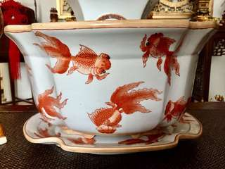 Antique porcelain goldfish pot