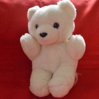 Small white teddy bear