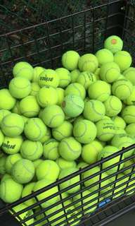 Tennis Balls mostly Wilson Trainers.