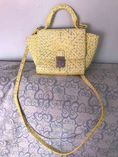 Zara bag (used)