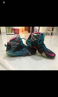 Lebron 12 nike basketball shoes