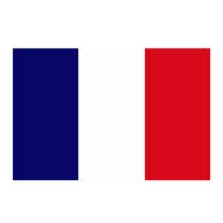 France Flag (3x5ft)