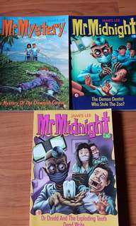 Children story book mr mystery midnight