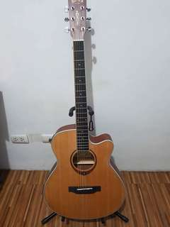 Acoustic Guitar with Pick Up
