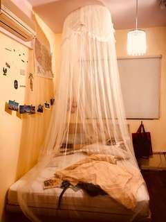 🚚 小公主蚊帳