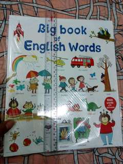 EDUCATIONAL BOOKS: Big Book of English Words