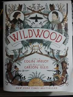 Fantasy novel: Wildwood