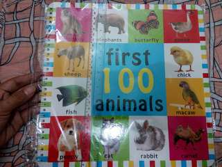 Educational book/Pcture book: First 100 animals