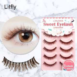 [BN] LITFLY Premium Quality False Eyelashes   BROWN