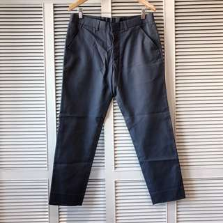 Men's Bluish Grey Pants