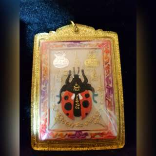 Kruba Apichat Ladybird Amulet  ( 100% Authentic From Temple)