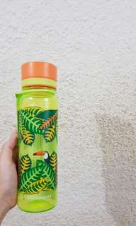 🚚 Starbucks bottle with birds design