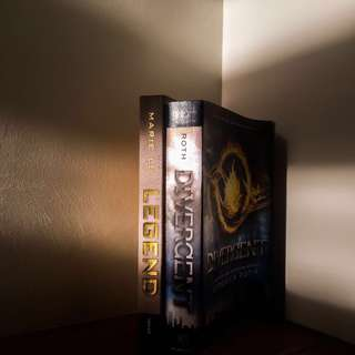 Legend & Divergent Book