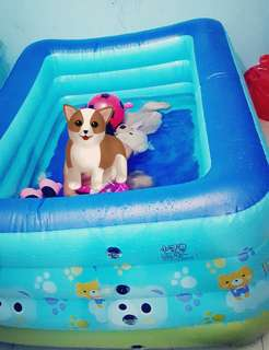 Inflatable Kids Pool (1.8MM) (Includin Pump)