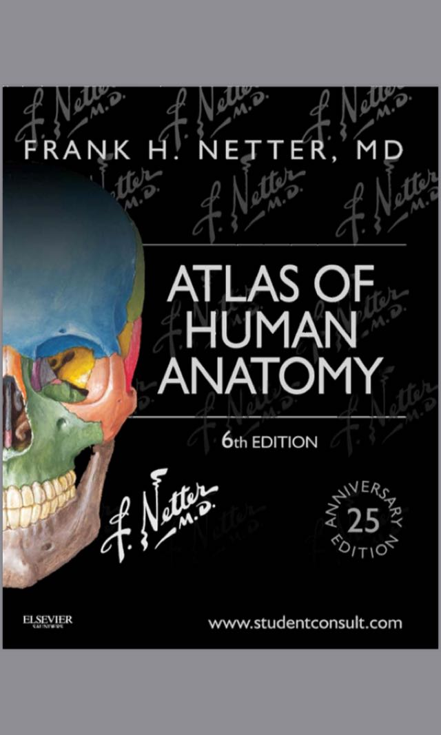 Netter\'s Atlas of Human Anatomy PDF, Books, Books on Carousell