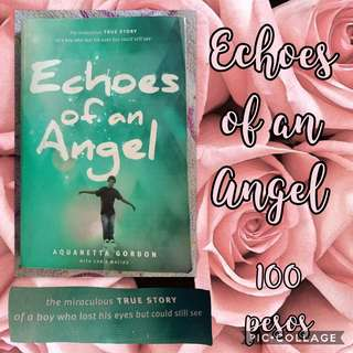 Echoes of an Angel Book