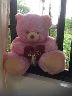 Blue magic pink teddy