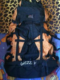 Carrier Alpina Grizzly