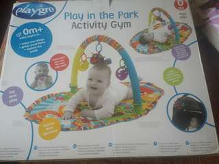 Play in the park activity gym