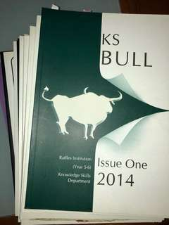 KS Bull Raffles Institution (2007-2014)