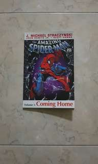 The Amazing Spider-Man Vol 1 (Marvel Graphic Novel TPB - Platinum edition)