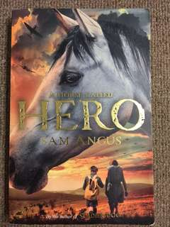 Children/Teen Book War Pony: A Horse Called Hero